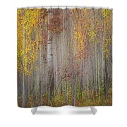 Painting Of Trees In A Forest In Autumn Shower Curtain