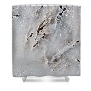 Painting On Ice Shower Curtain