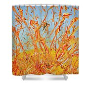 Paintsplosion Shower Curtain