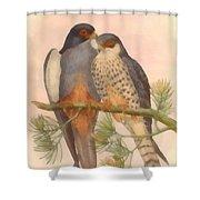 Pair Amur Falcons Shower Curtain