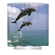 Pair Of Bottle Nose Dolphins Jumping Shower Curtain