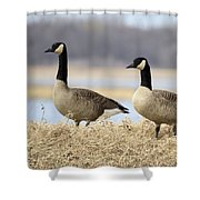 Pair Of Canadians Shower Curtain