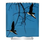 Pair Of Geese Shower Curtain