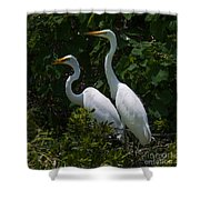 Pair Of Herons Shower Curtain