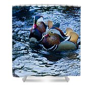 Pair Of Male Mandarin Duck-signed-#8236 Shower Curtain