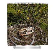 Palacios Texas Pulley Wire And Flowers Shower Curtain