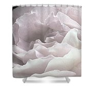 Pale Pink Rose Petals Shower Curtain