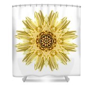 Pale Yellow Gerbera Daisy I Flower Mandala White Shower Curtain