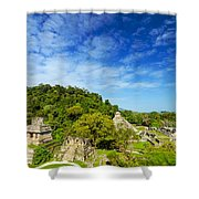 Palenque View Shower Curtain