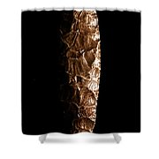 Paleolithic Tool 3 No Text Shower Curtain