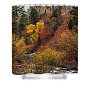Palisades Creek Canyon Shower Curtain