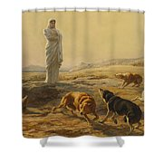 Pallas Athena And The Herdsmans Dogs Shower Curtain