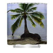 Palm At The Edge Of The Sea Number Two Shower Curtain