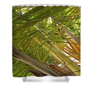 Palm Blossoms Shower Curtain