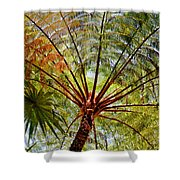 Palm Canopy Shower Curtain