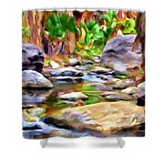 Palm Canyon Trail Shower Curtain