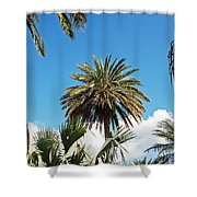 Palm City Shower Curtain