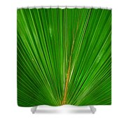 Palm Closeup Shower Curtain