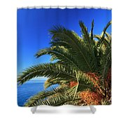 Palm Over The Sea Shower Curtain