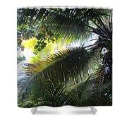 Palm Pattern 1 Shower Curtain