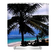 Palm Shadows Shower Curtain