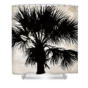Palm Sihlouette Shower Curtain