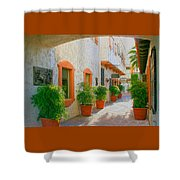 Palm Springs Courtyard Shower Curtain