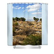 Palm Springs Indian Canyons View  Shower Curtain