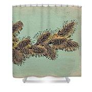 Palm Sunday Shower Curtain
