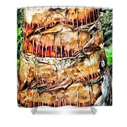 Palm Tree 14 Shower Curtain