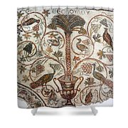 Palm Tree And Birds Shower Curtain