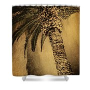 Palm Tree At The Aladdin Casino Shower Curtain
