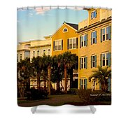 Palm Tree Beauty At Isle Of Palms Shower Curtain