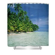 Palm Tree Lined Beach Papua New Guinea Shower Curtain