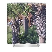 Palm Tree Scenery Shower Curtain