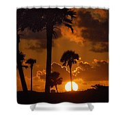 Palm Tree Sunrise In Gulf Shores Shower Curtain