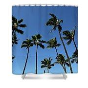 Palm Trees Against A Clear Blue Sky Shower Curtain