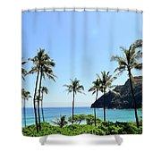 Palm Trees Along The Coast Of Waimanalo Shower Curtain