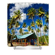 Palm Trees And Colorful Building Shower Curtain