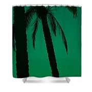 Palm Trees And Emerald Sky. Shower Curtain