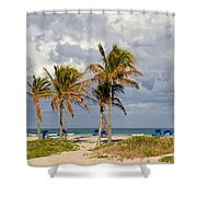 Palm Trees At The Beach Shower Curtain