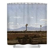 Palm Trees In Elche Shower Curtain