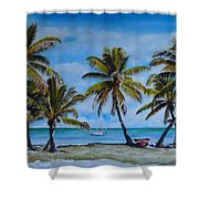 Palm Trees In The Keys Shower Curtain