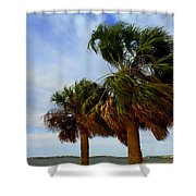 Palm Trees In The Wind Shower Curtain