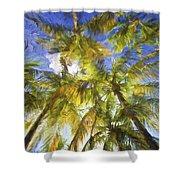 Palm Trees Of Aruba Shower Curtain