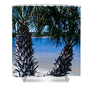 Palm Trees Of Gulf Breeze Shower Curtain