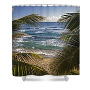 Palm Trees On Isabel Beach In Puerto Rico Shower Curtain by Bryan Mullennix