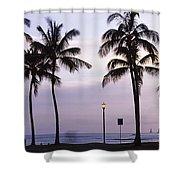 Palm Trees On The Beach, Waikiki Shower Curtain