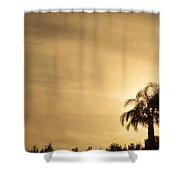 Palm Trees Sunset Over At Sea Of Galilee Shower Curtain