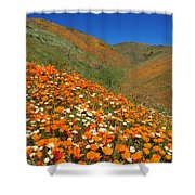 Palmdale Poppies Shower Curtain